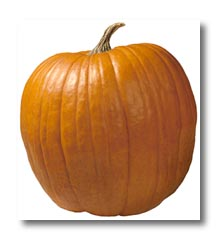The Amazing Health Benefits Of Pumpkins | Insearch4success.com